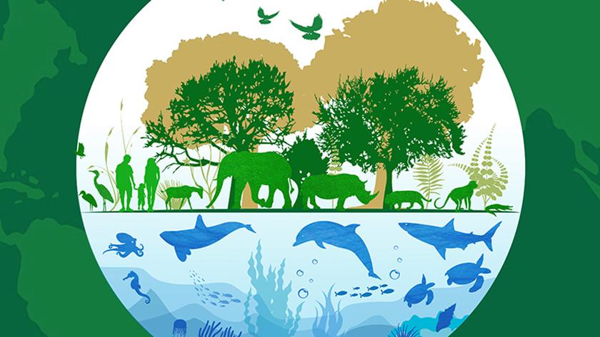Rememorarán en Cuba el Día Mundial de la Vida Silvestre