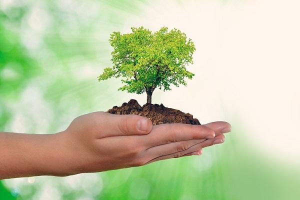 Evidencia Cuba su compromiso con el cuidado del medio ambiente