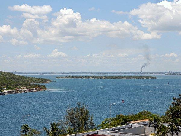 Por la preservación de la bahía de Cienfuegos y su riqueza de flora y fauna Foto: Facebook