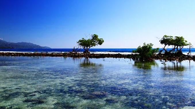 Avanza rehabilitación de playa Punta Hicacos en Granma