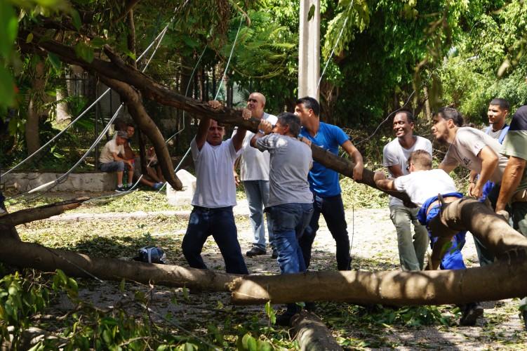 Citmatel en las tareas de recuperación tras el paso del huracán Irma