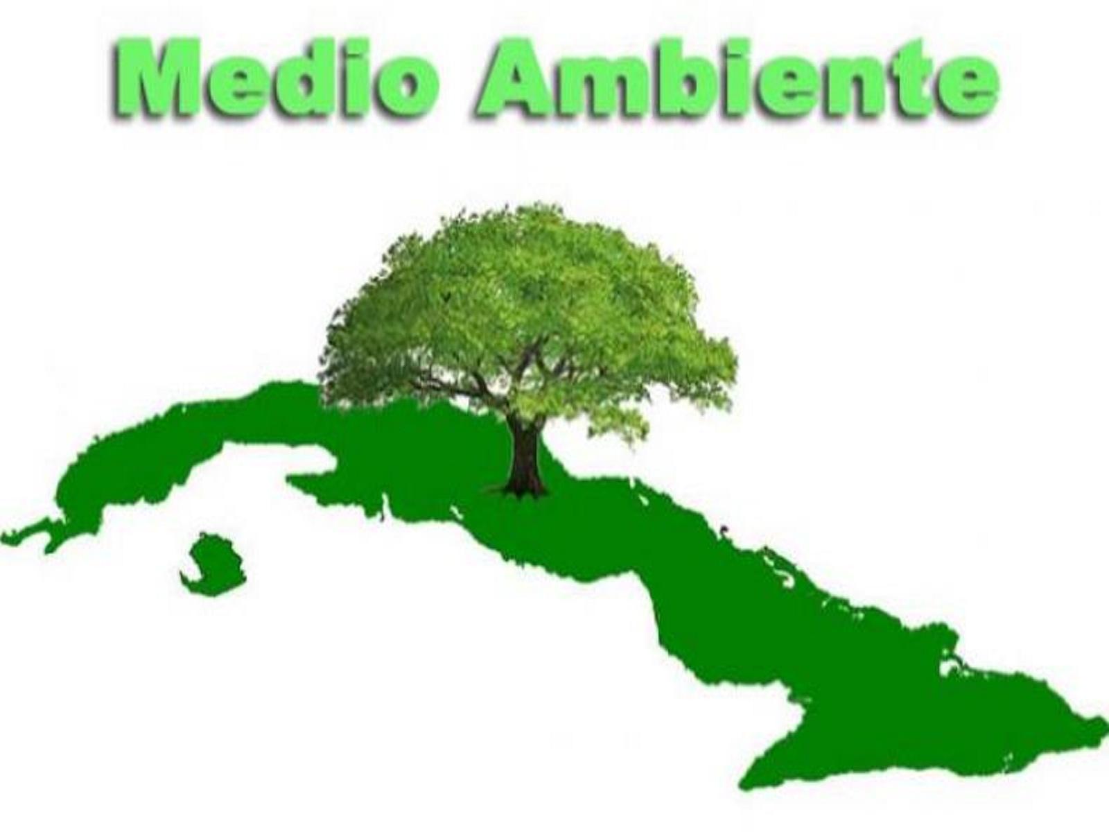 Banner Medio Ambiente