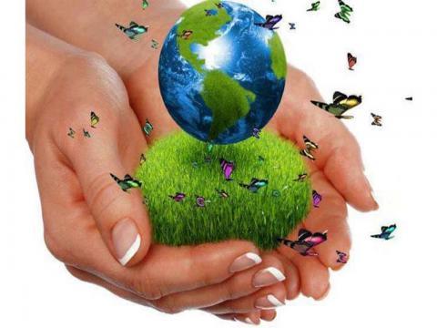 Cuba celebra Día Mundial del Medio Ambiente