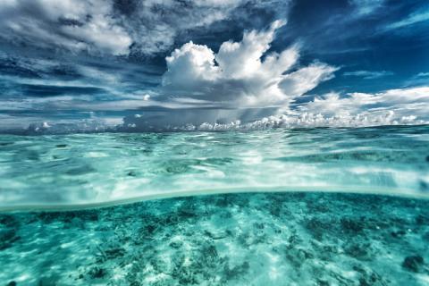 Océanos del mundo