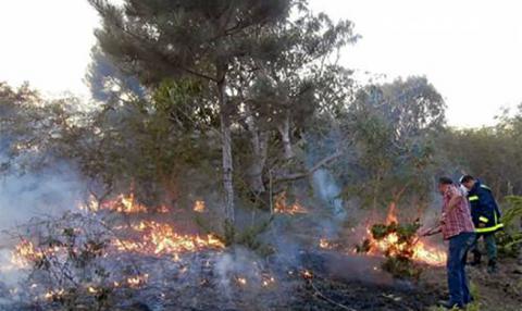 Prevenir y educar, las mejores armas contra incendios forestales